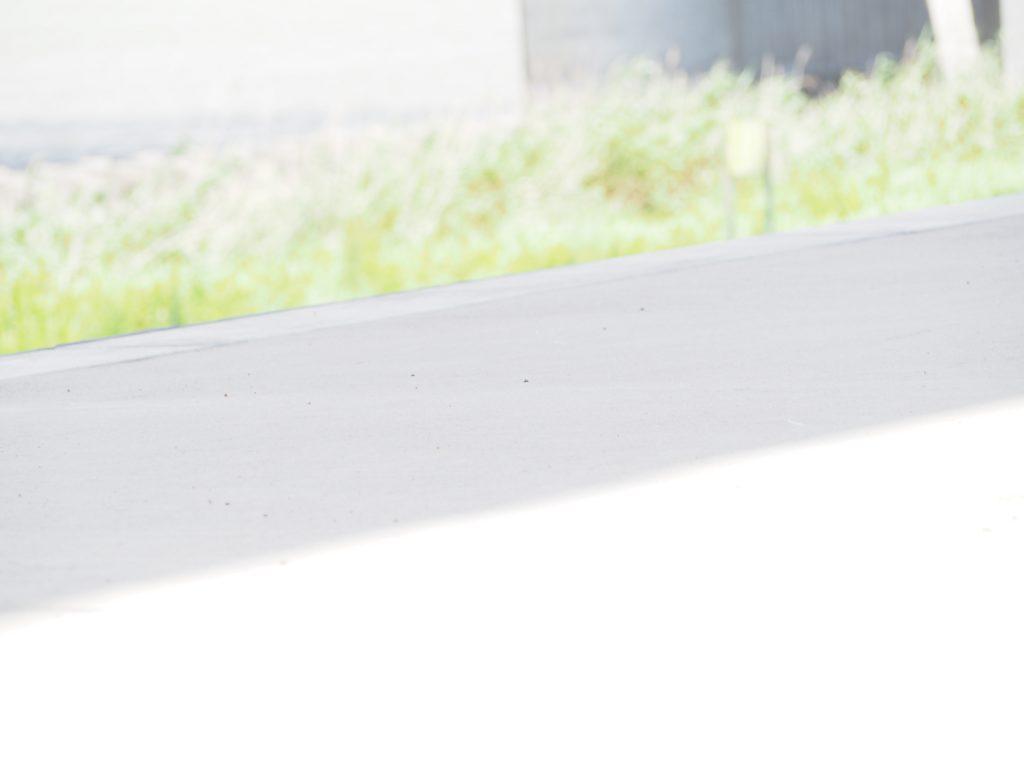 ローアングルからの写真