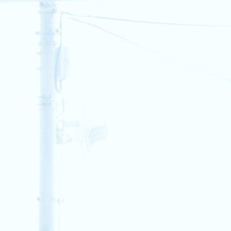 霧の信号機の写真